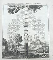 Un monumento del Dir. Civile, le Loix Civiles di Domat.