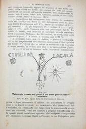 Filippi-Borri. Manuale di medicina legale sul cod. pen.